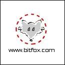 BITFOX® Fernwartung